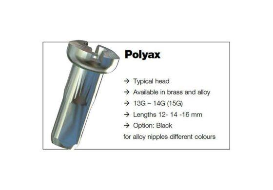 Sapim Polyax Messing Brass Nippel 2mm 12mm Silber
