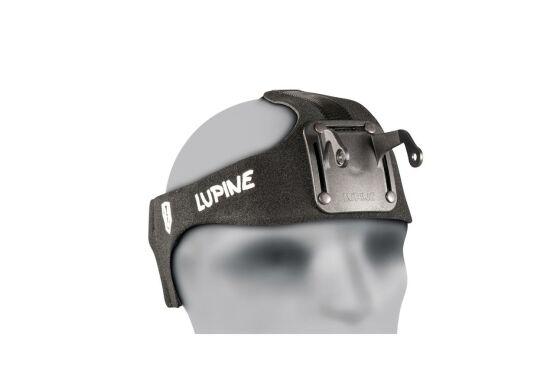 Lupine Stirnband HD Betty R