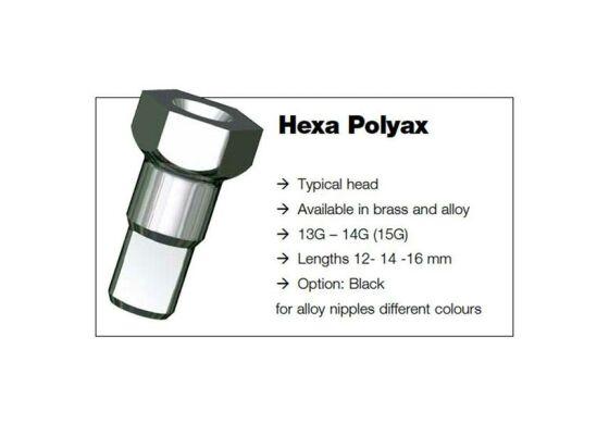 Sapim Polyax Hex 6 Kantnippel Alu 2x 14mm