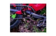 Wolftooth CAMO einfach Kettenblatt Drop Stop für CAMO Spider